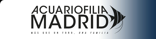 Acuariofilia Madrid