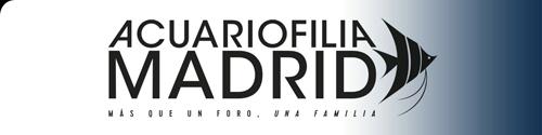 Acuariofilia Madrid